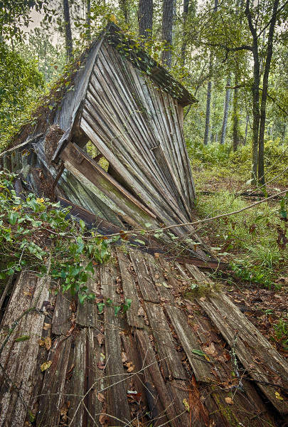 Critical Linkages Photographer Will Dickey captures the combination of history and ecology found within the Northeast Florida Timberlands and Watershed Reserve.