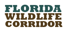 The Florida Wildlife Corridor
