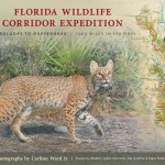 Florida Wildlife Corridor Expedition: Everglades to Okefenokee Paperback Book (2012)