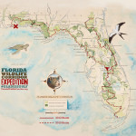 FWCE Glades to Gulf Watercolor Poster
