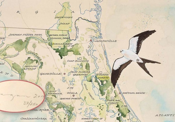 Florida Wildlife Corridor Expedition Watercolor Map Print