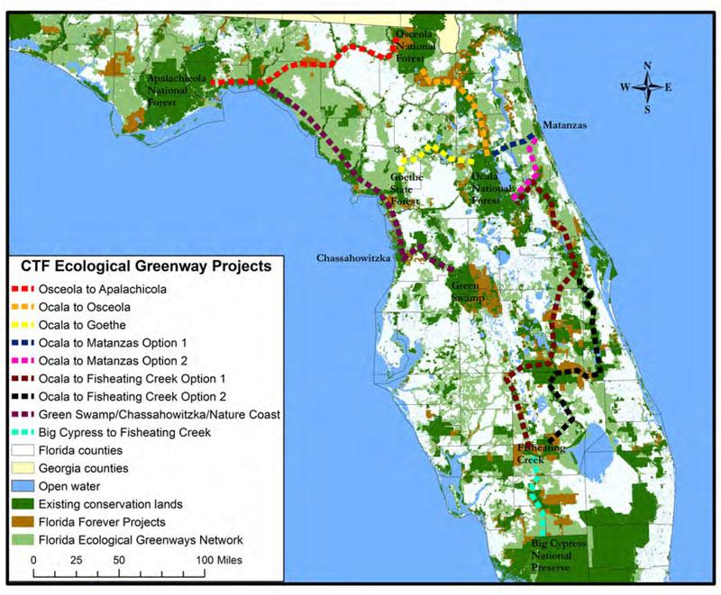 Florida Ecological Greenway
