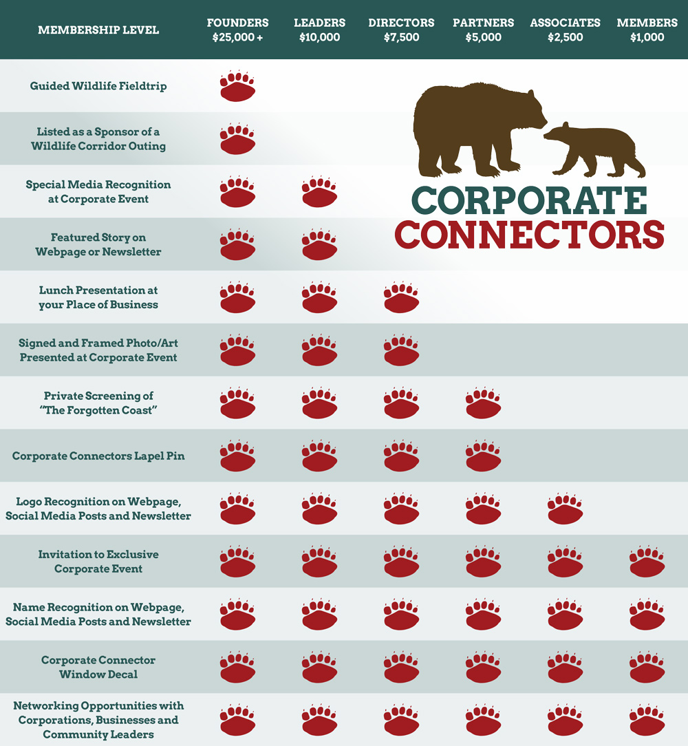 Corporate Connector
