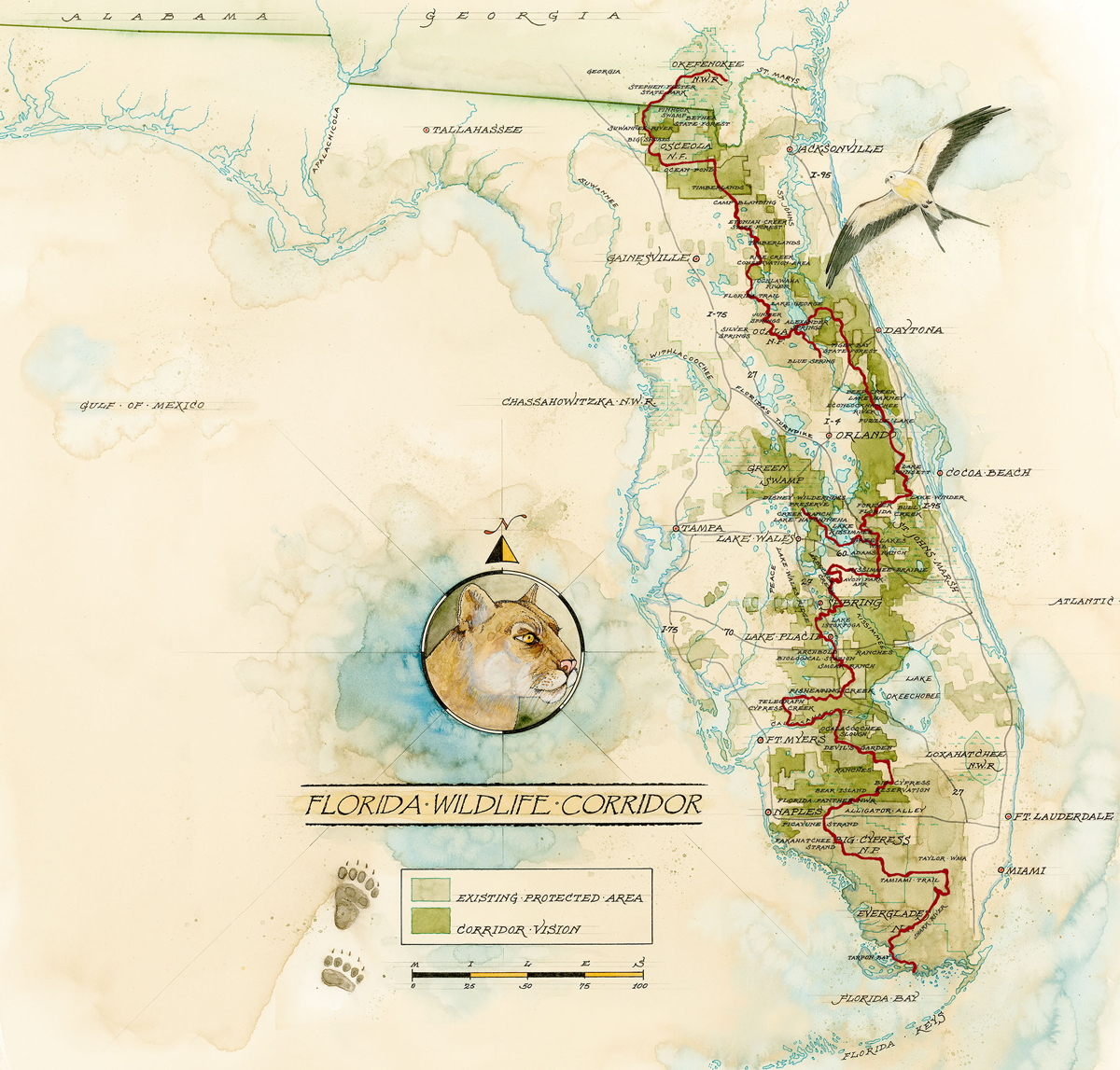 Everglades to Okefenokee