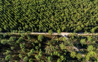Coastal Headwaters Longleaf Florida Forever Project